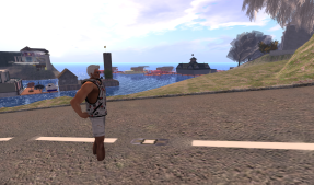 Sim crossing at Smaug